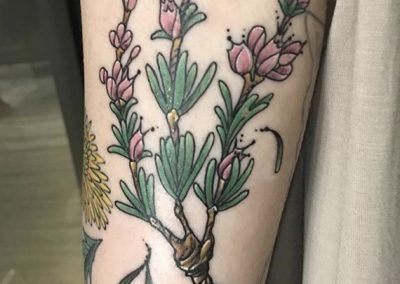 Rosemary plant tattoo - by Bob - Maui Tattoo Artist at Mid-Pacific Tattoo