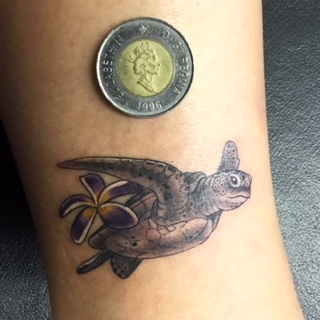 Tiny black and grey sea turtle honu tattoo- by Curtis - Maui Tattoo Artist at Mid-Pacific Tattoo